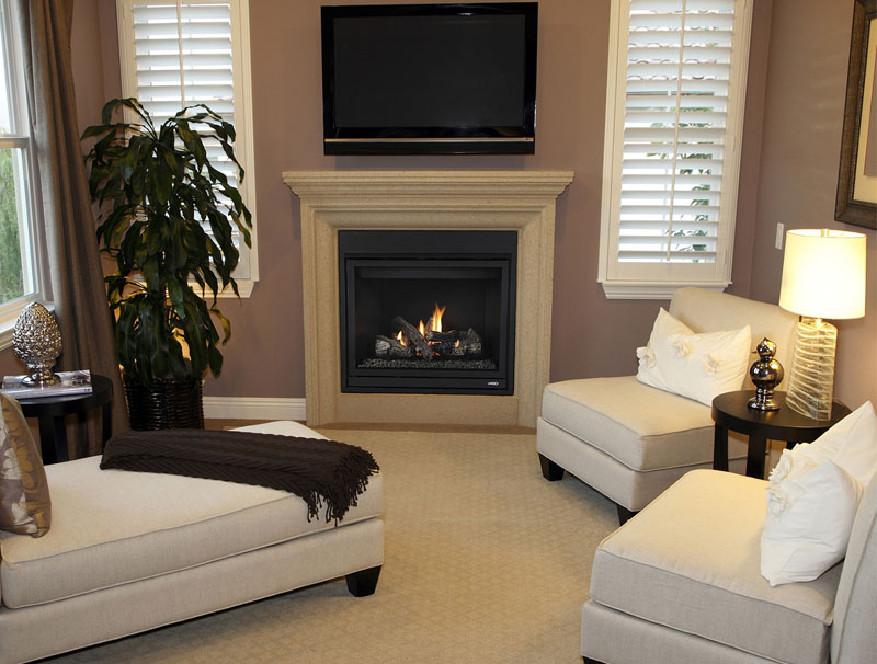 MLDVT model fireplace