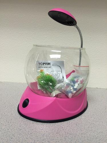 Petsmart recalls top fin betta bowl kits due to laceration for Fish bowl petsmart