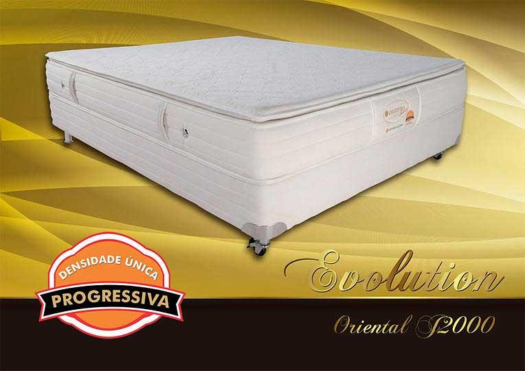 Recalled Evolution mattress