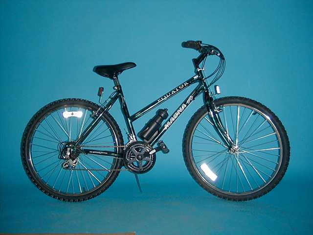 Picture of Recalled Mountain Bike