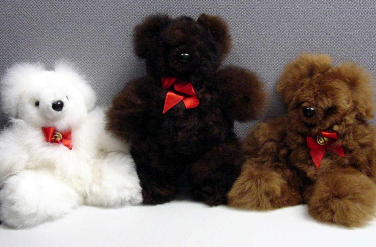 Picture of Recalled Bears