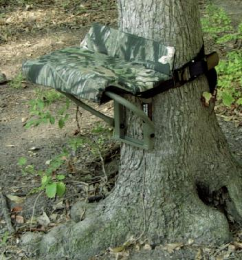 Treestand and Treeseat