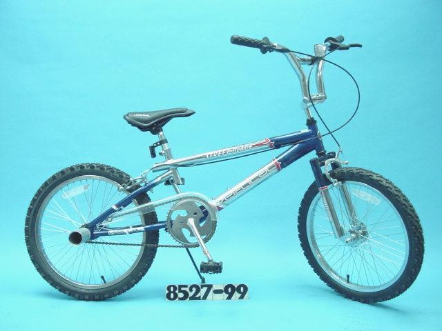 Picture of Recalled Bike