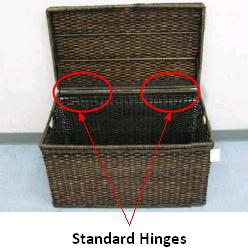 Picture of Recalled Storage Trunk Showing Standard Hinges