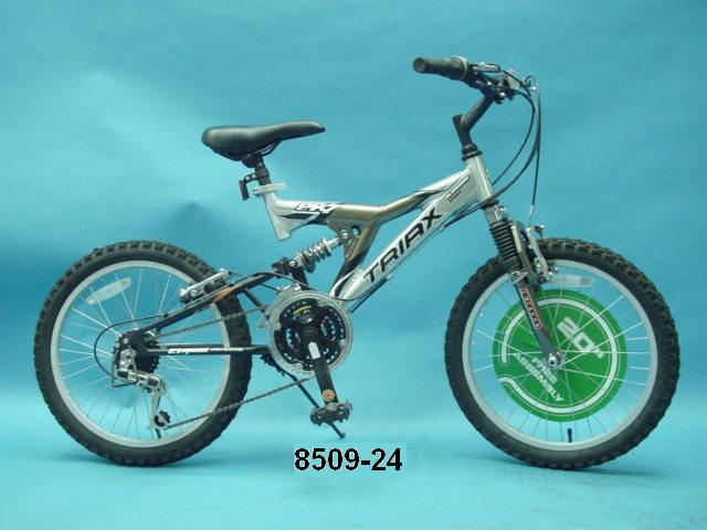 Picture of Recalled Bicycle 8509-24