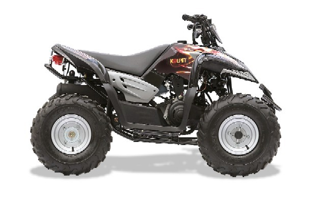 Picture of Youth All Terrain Vehicles (ATVs)