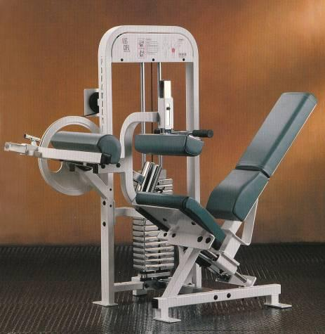 Picture of Recalled Leg Curl Machine