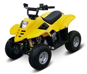 Picture of Recalled Youth Model ATV