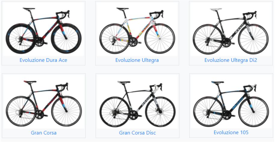2017 Masi Evoluzione (all models) and Gran Corsa model