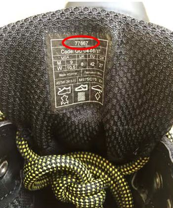 Style number on tongue label on the recalled ACE Republic work boots
