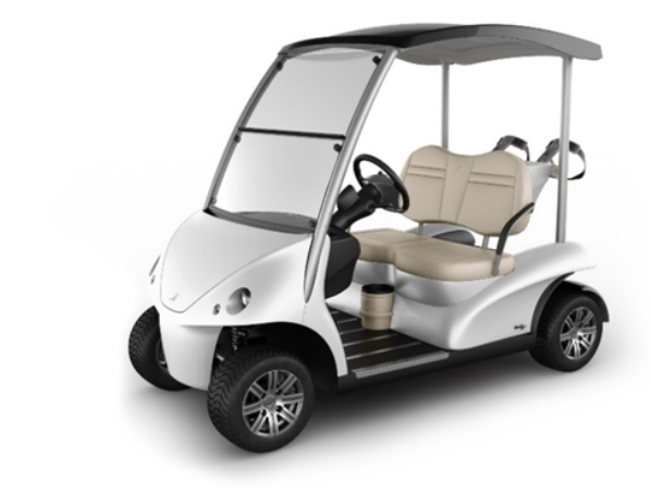 Recalled Garia Golf (2 Passenger)