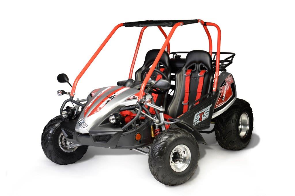 Hammerhead Off-Road GTS Platinum fun-kart
