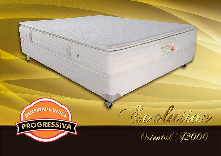 Recalled Evolution mattress