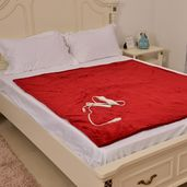 Red Electric Heated Micro Plush Flannel Sherpa  Throw Blanket (50x60 in)