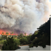 Keep Safe during Wildfire Season