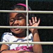 Las rejillas metálicas mantienen los insectos afuera pero no mantendrán los niños adentro