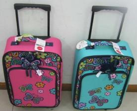 Target Recalls Circo Childrens' Travel Cases Due to Violation of Lead Paint Standard