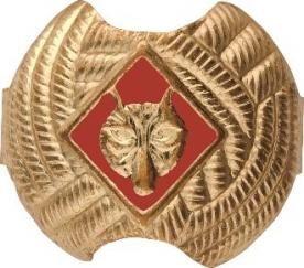 Boy Scouts of America Recalls Neckerchief Slides Due to Violation of Federal Lead Content Ban