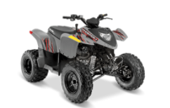 Recalled Model Year 2018-2020 Polaris Phoenix 200 ATV