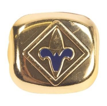 Blue Webelos neckerchief slide