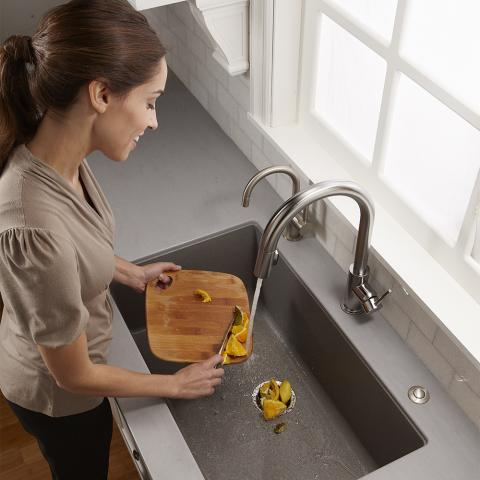 InSinkErator® Recalls SinkTop™ Switch Accessory for Garbage ... on