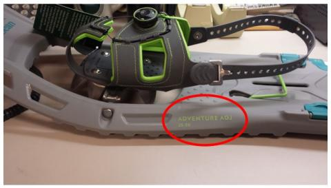 "L.L. Bean Adventure Adjustable Snowshoes 25""-30"" in Glacier/Teal"