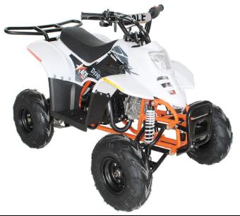 Recalled EGL Motor ACE D110 Youth ATV