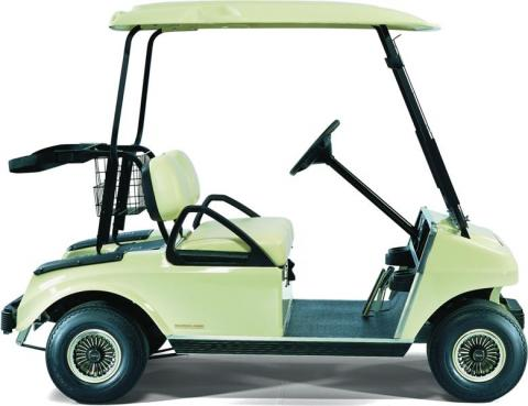 DS Gas Golf Car (AG)