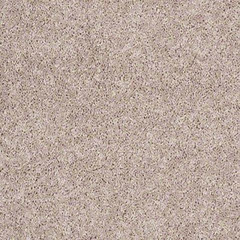 Shaw Industries Aristocrat II Carpet