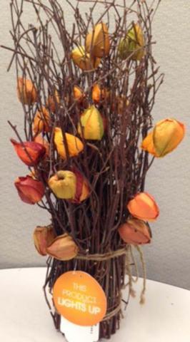 Chinese Lantern plant arrangement