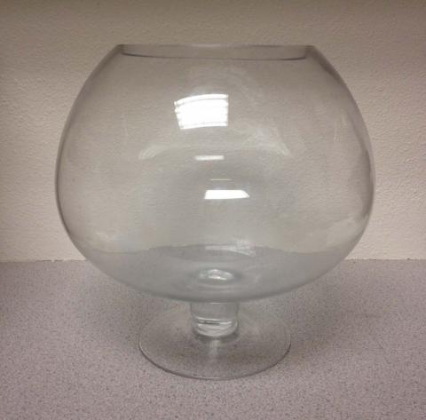 Grreat Choice or Top Fin glass fish bowl