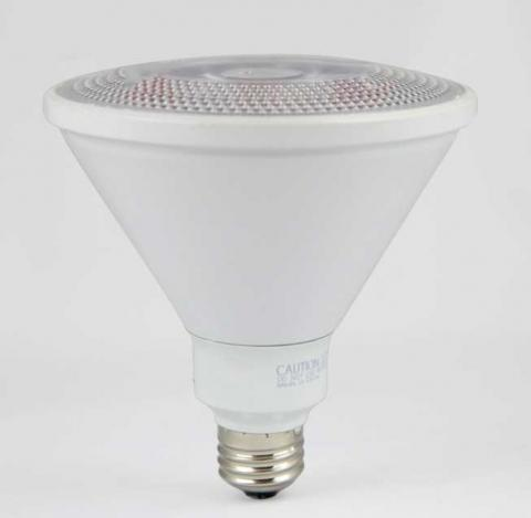 LED 14 watt PAR38 Wet Location Bulb