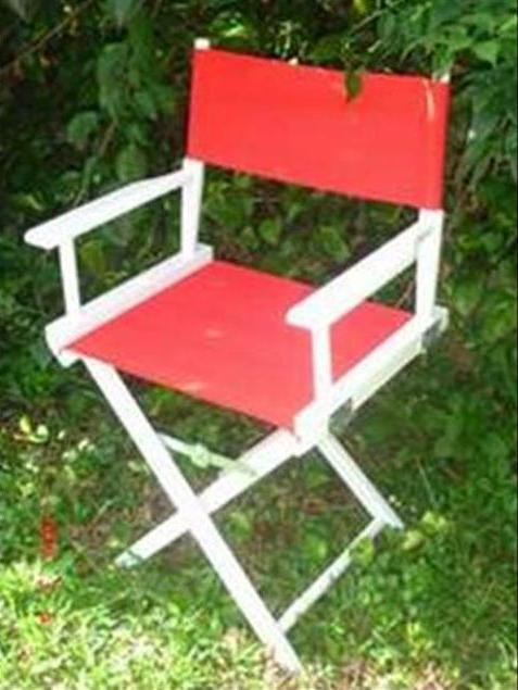 Picture of Recalled Directors Chair