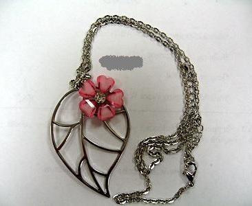 Picture of Recalled Children's Jewelry
