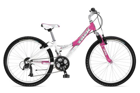 Picture of Recalled Model MT220 - Years 2006 and 2007 Girls Bicycle