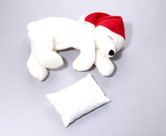 Picture of Recalled Cozy Warming Polar Bears