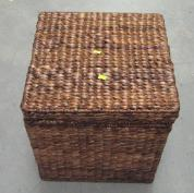 Picture of Recalled Storage Trunk