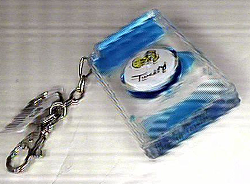 Tweety Key Chain