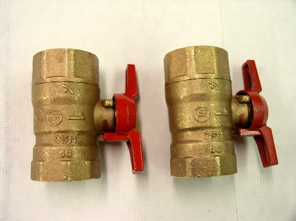 Picture of Recalled Valves
