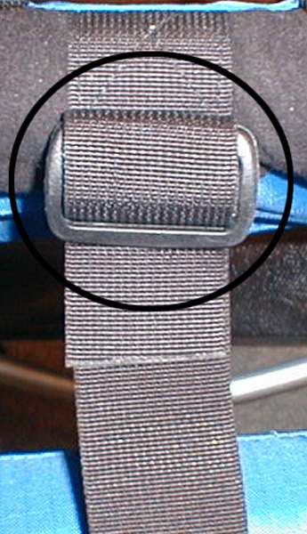 Picture of Strap and Buckle