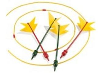 Picture of Recalled Lawn Dart Game
