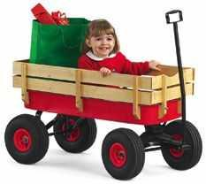 Picture of Recalled Wagon