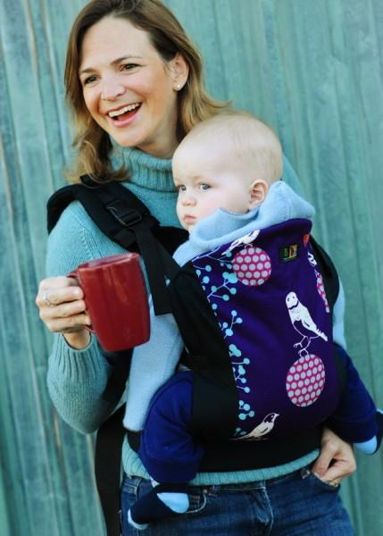 Picture of Recalled Infant Carrier