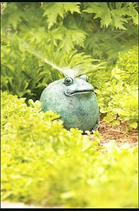 Picture of Recalled Toad Lawn Sprinkler