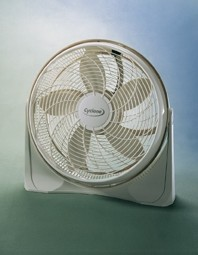 Picture of Recalled Fan
