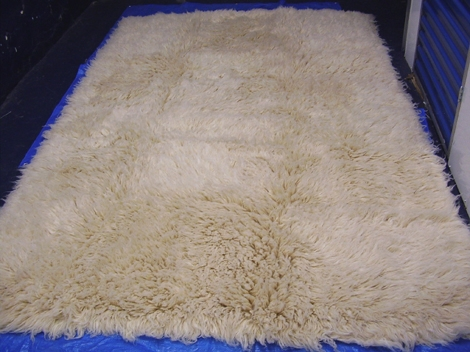 Picture of Recalled Rug